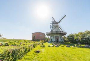 Mühle Fortuna im Landschaftsmuseum Angeln/Unewatt