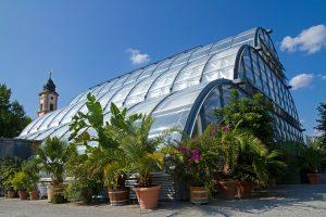 Palmenhaus auf der Insel Mainau