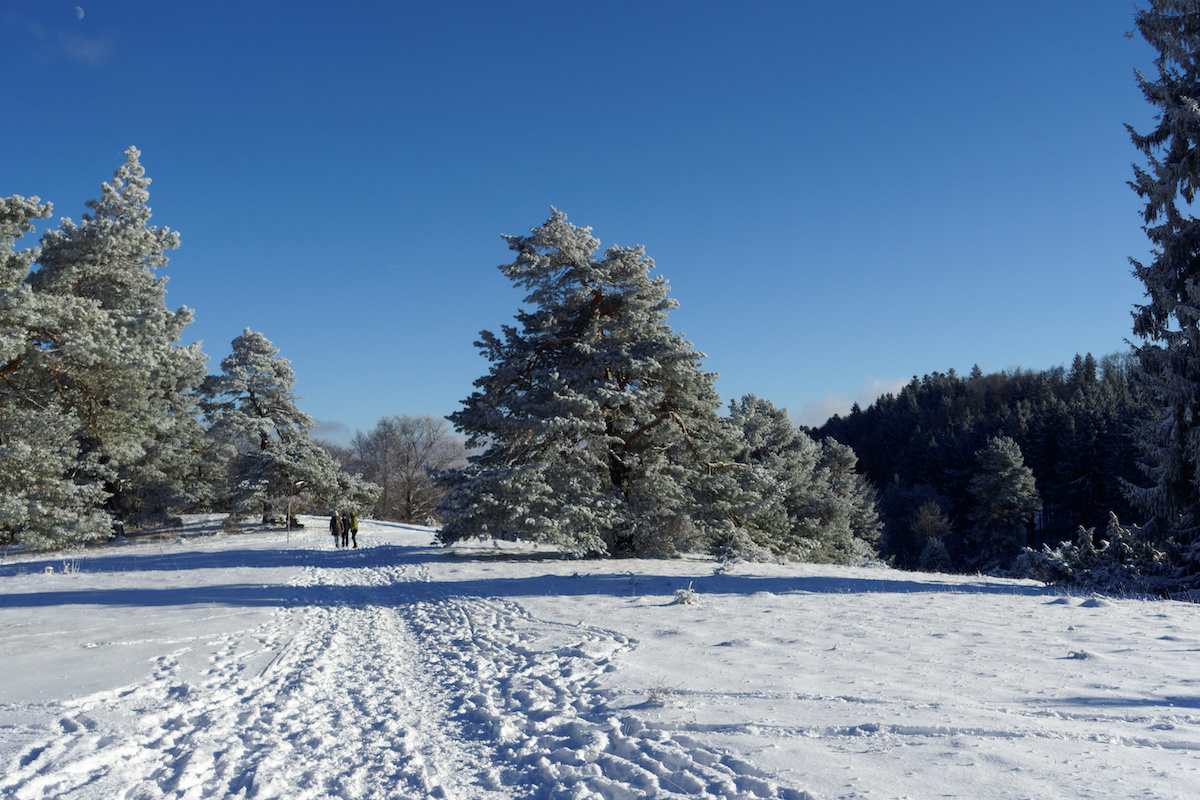 Winterwandern auf dem Schneewalzer, Schwäbische Alb - Winterwanderwege auf der Schwäbischen Alb