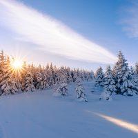 Winterlandschaft im Harz - Winterwanderwege im Harz