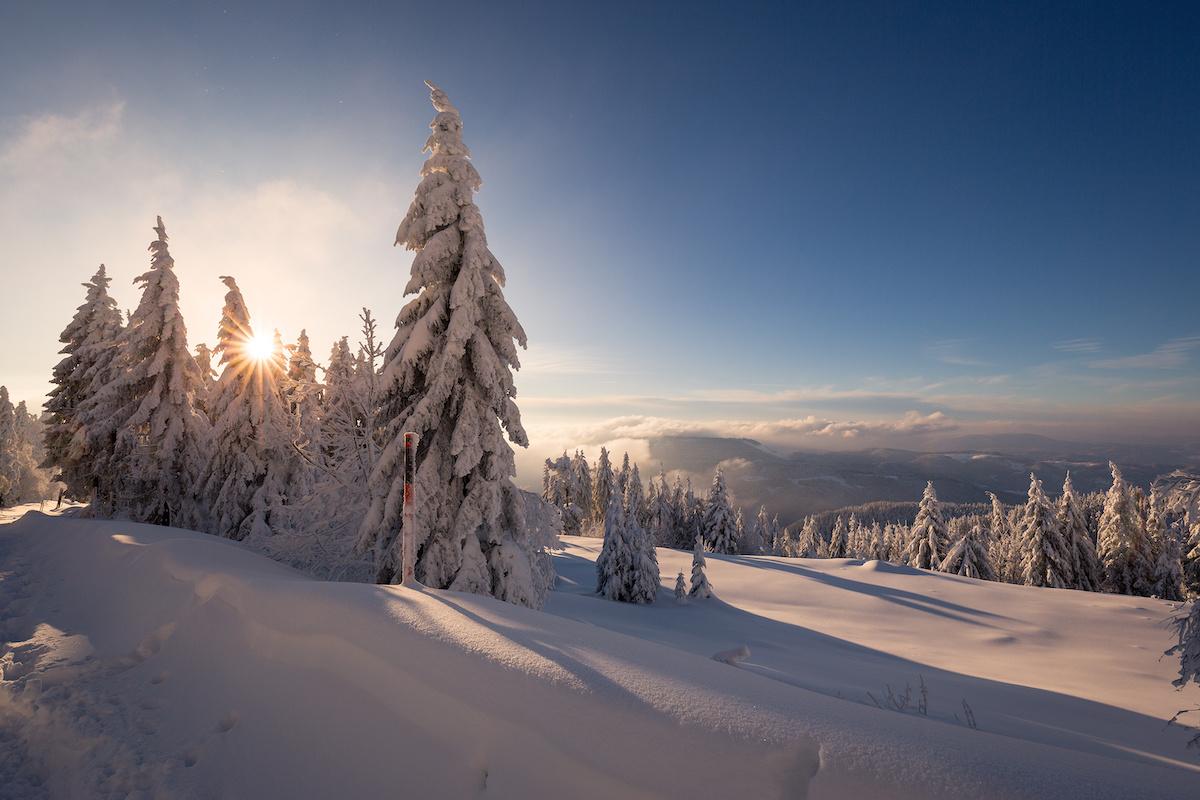 Verschneite Winterlandschaft im Schwarzwald - Winterwanderwege im Schwarzwald