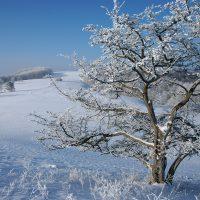 Winterlandschaft auf der Schwäbischen Alb - Winterwanderwege auf der Schwäbischen Alb
