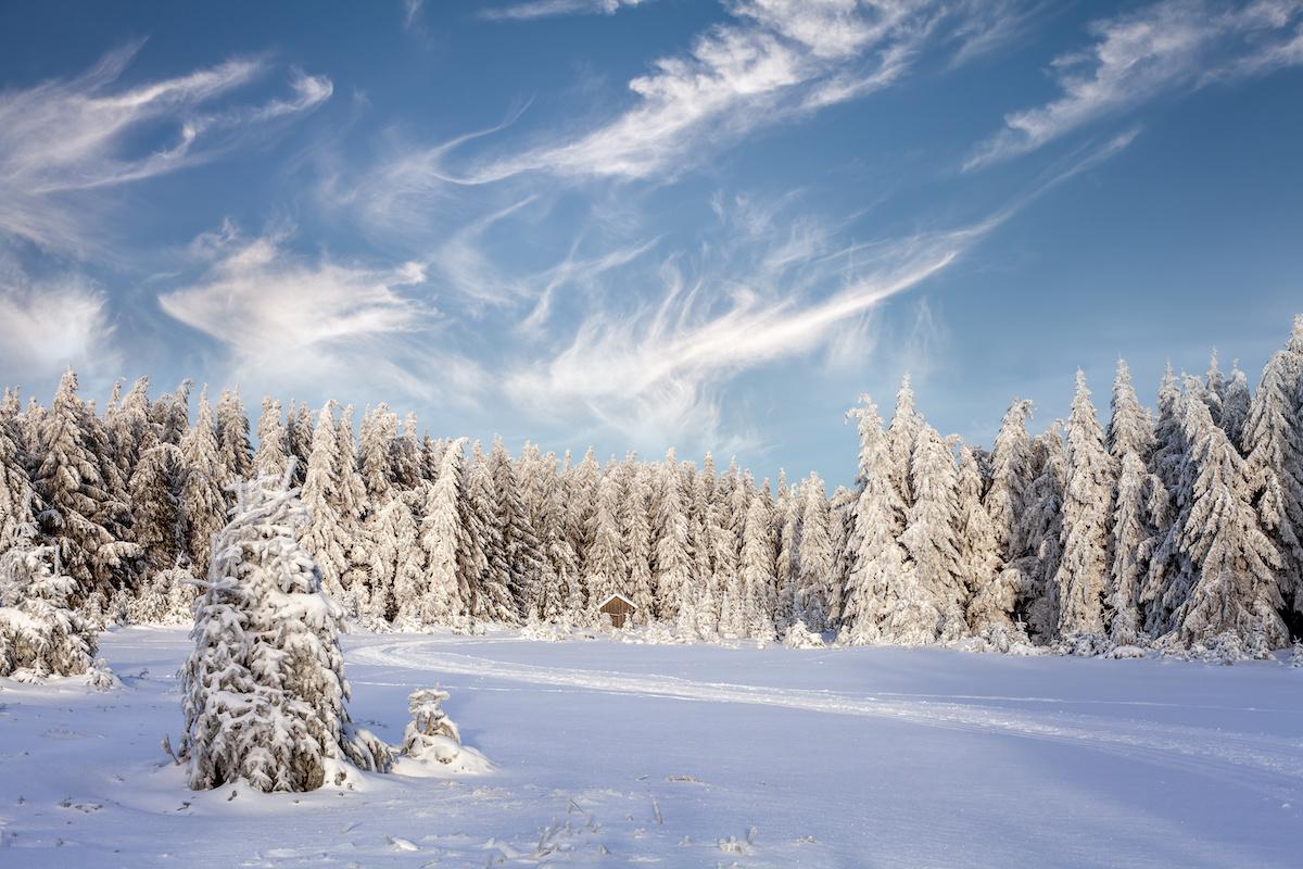 5 schöne Winterwanderwege im Thüringer Wald