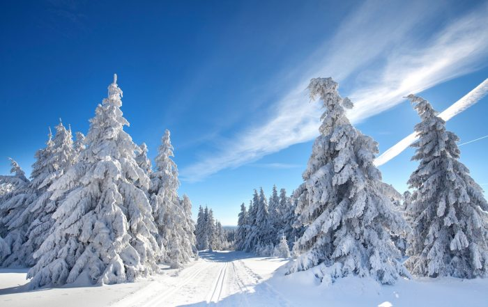 Winterwandern im Harz - Winterwanderwege im Harz - Winterzauber