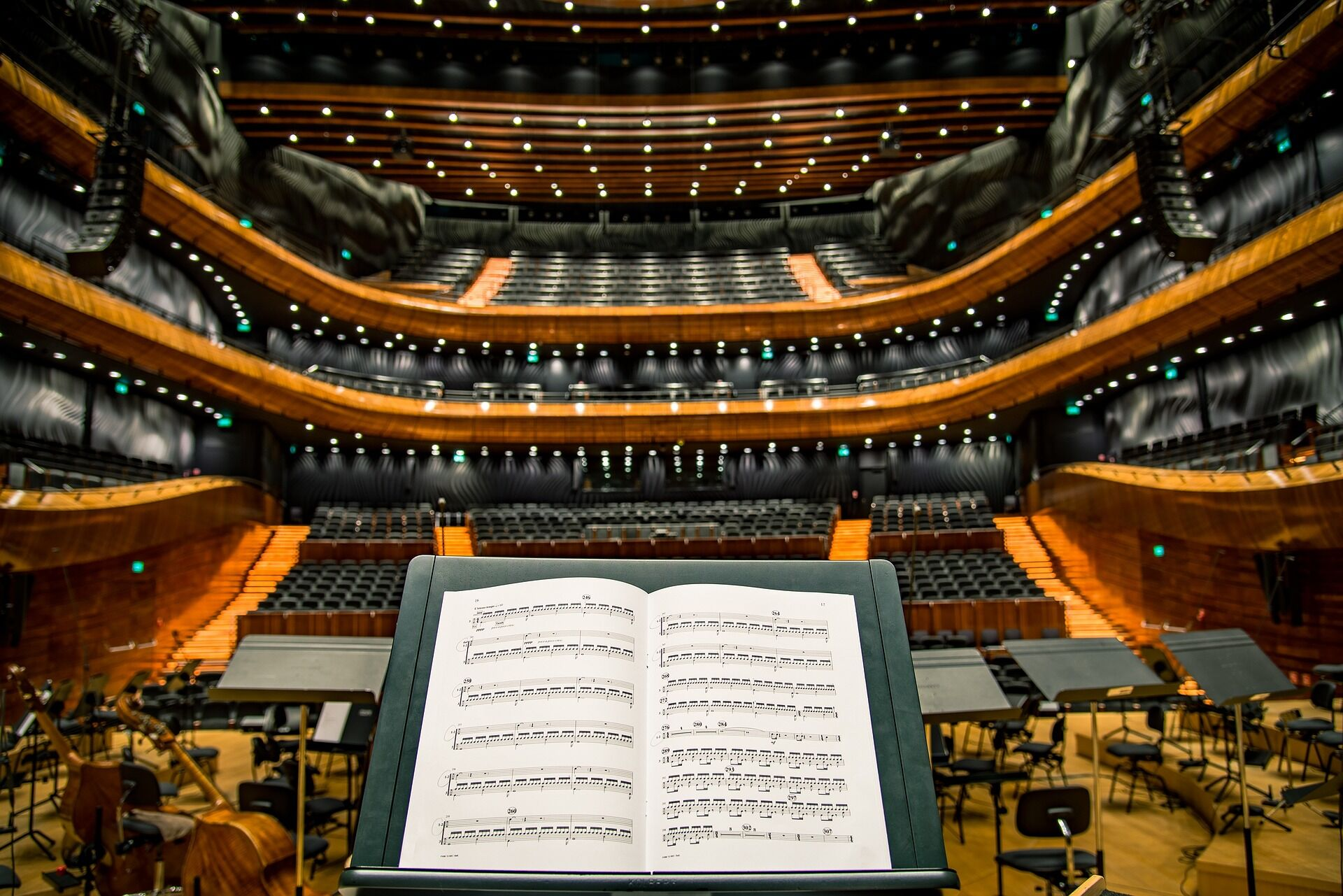 Konzert - Kultur im Netz