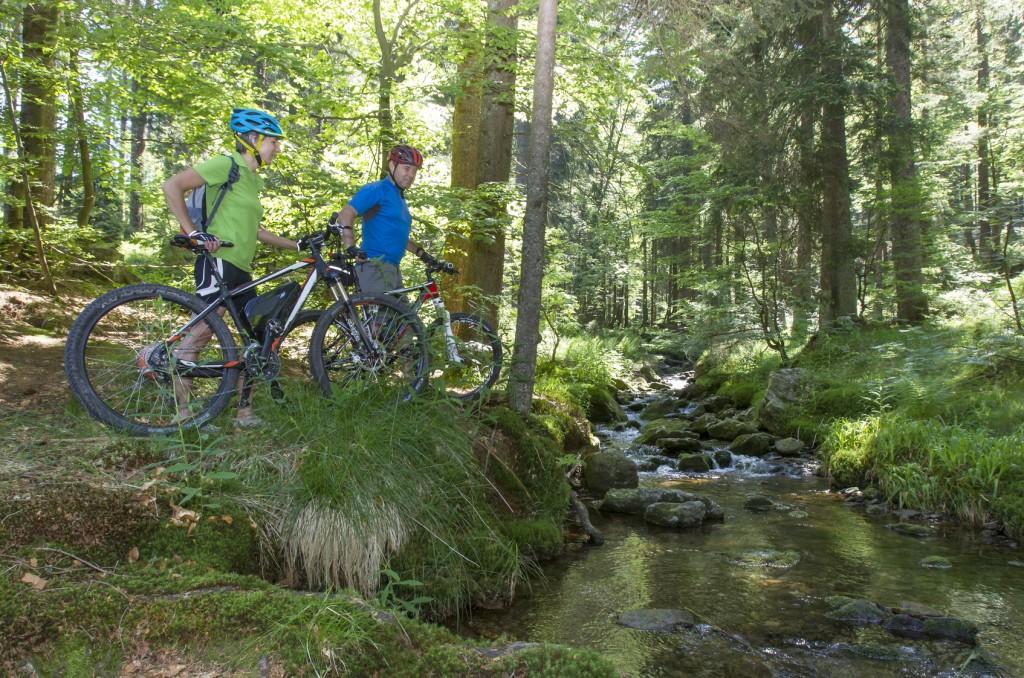 Radfahren im Bayerischen Wald: Rast am Bach