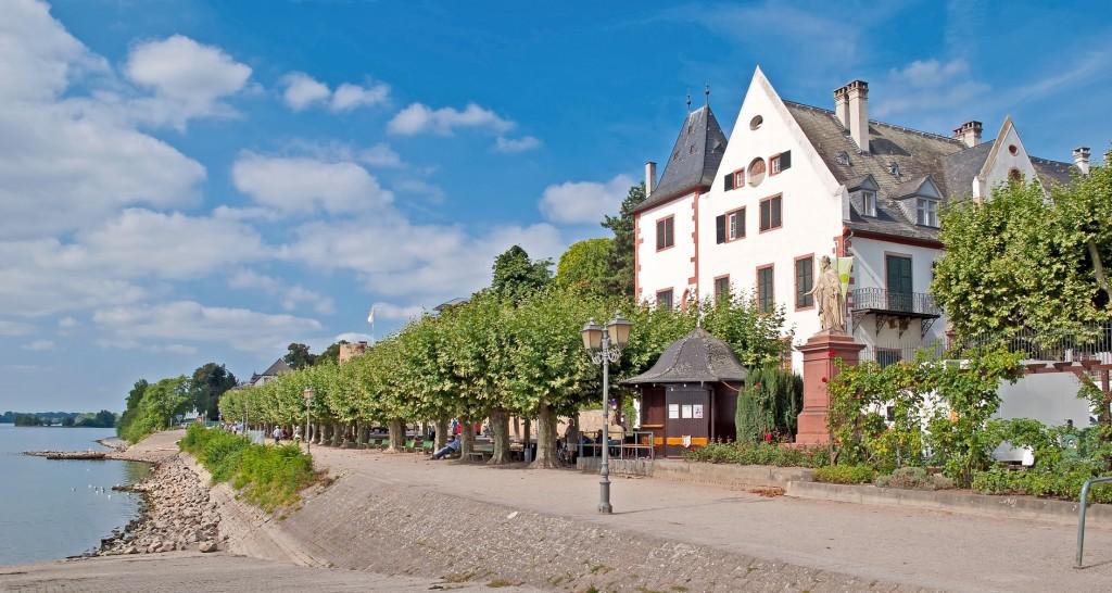 Rheinpromenade von Eltville im Rheingau