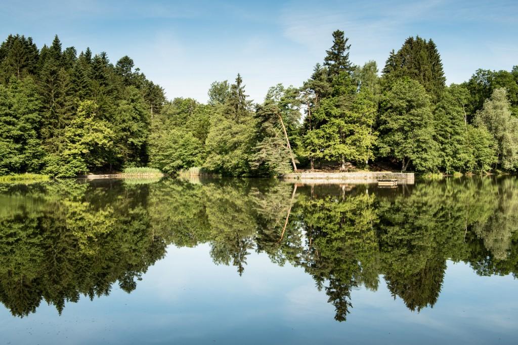 Der Schwäbische Wald: Naherholungsgebiet Ebnisee