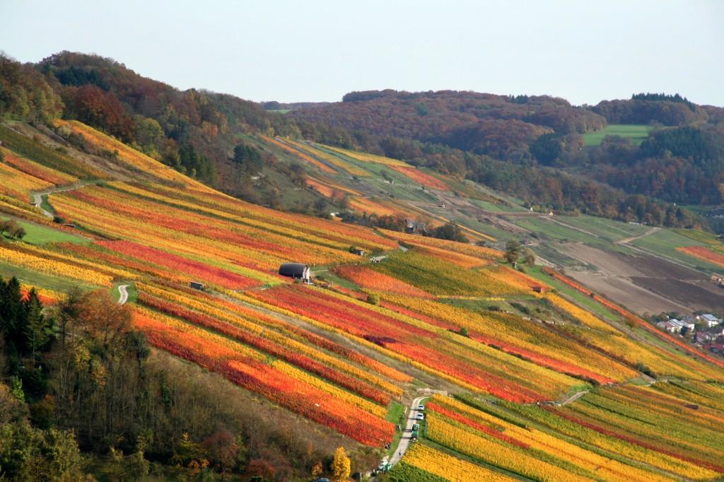 Herbst im Kochertal - Hohenlohe, Weinbaugebiet Franken