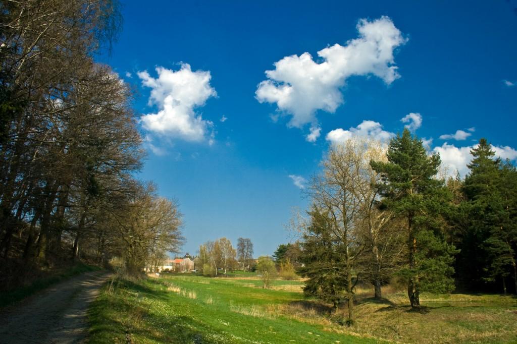 Frühling im Vogtland