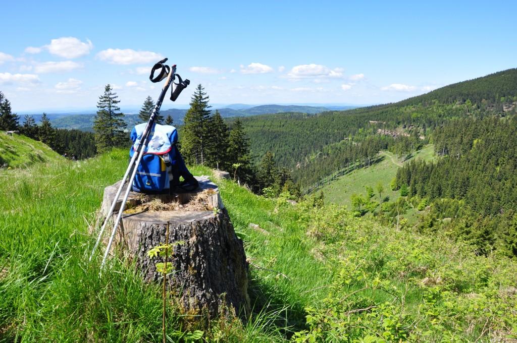 Wandern am Rennsteig im Thüringer Wald