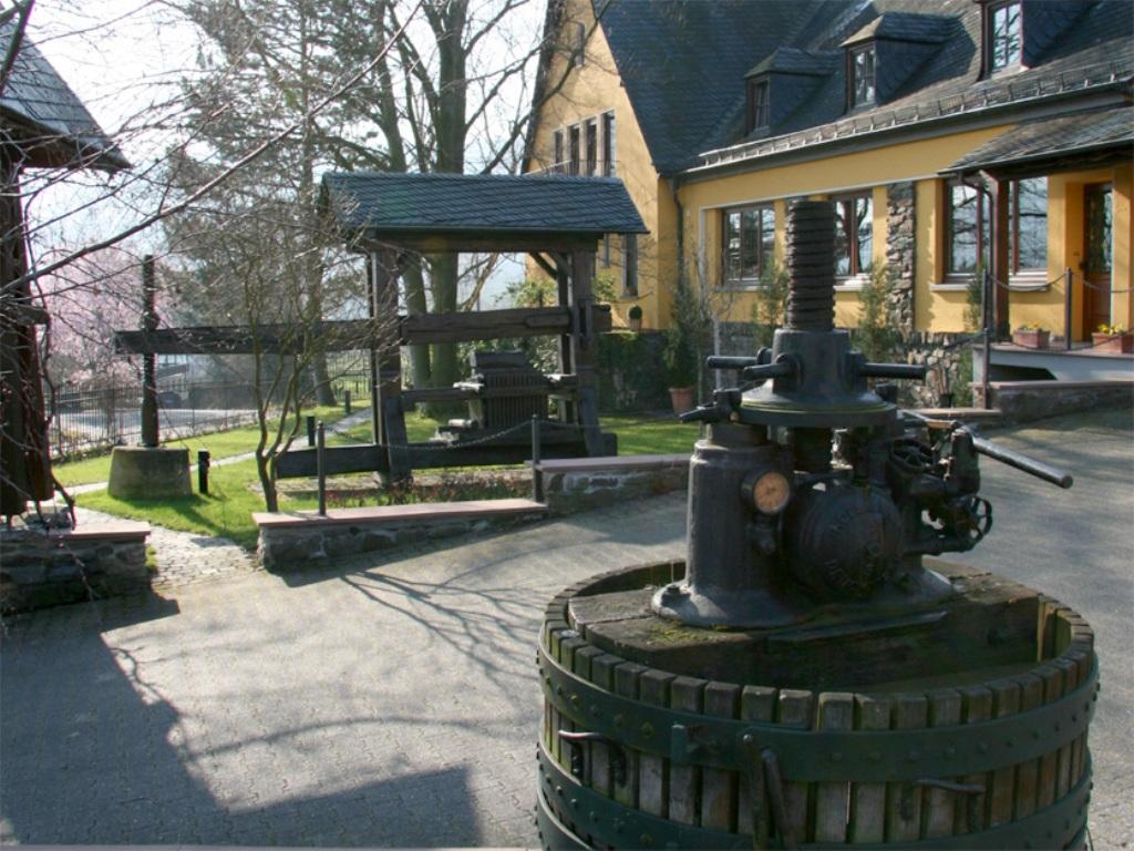 Auffahrt zum Weingut St. Urbans-Hof, Weingut St. Urbans-Hof, Leiwen/Mosel