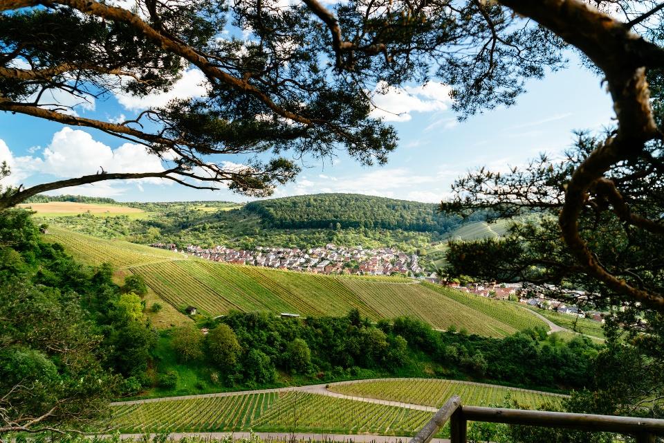 Dorf in den Weinbergen, Weinbaugebiet Württemberg