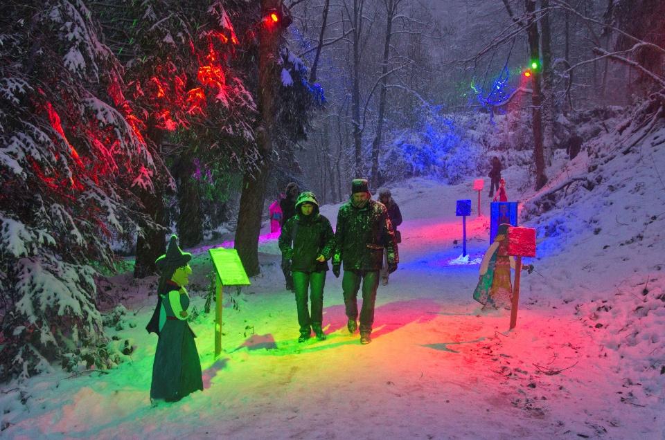 Der Märchenpfad zum Hochschwarzwald-Weihnachtsmarkt
