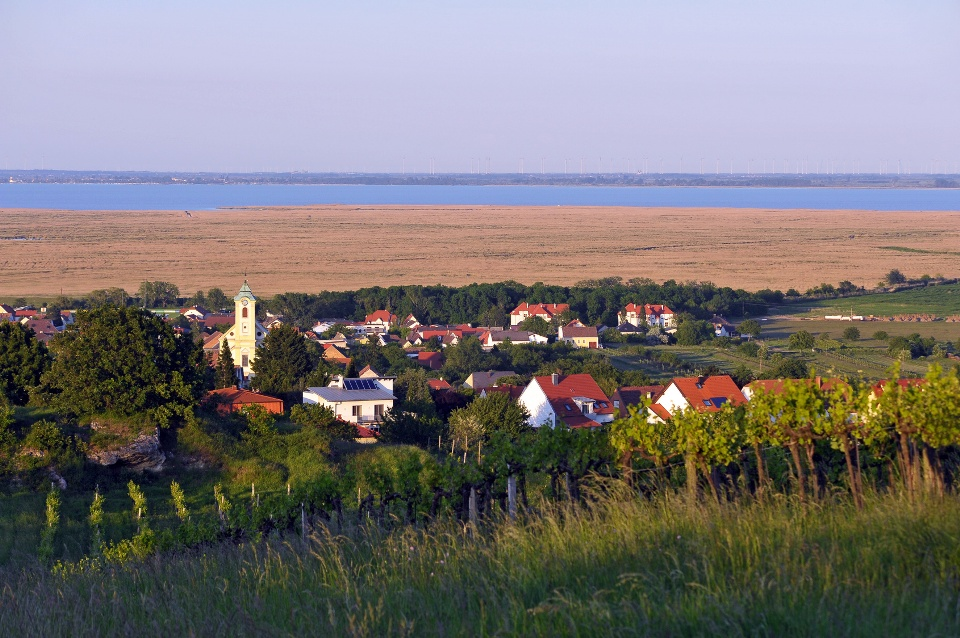 Oggau und Neusiedlersee