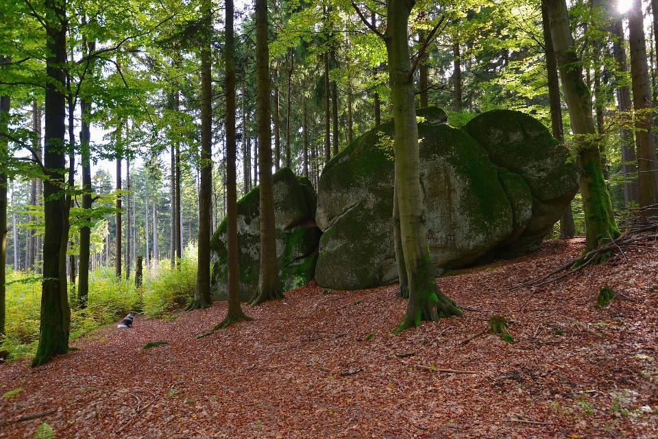 Granitfelsen im Fichtelgebirge, Wandern in Franken
