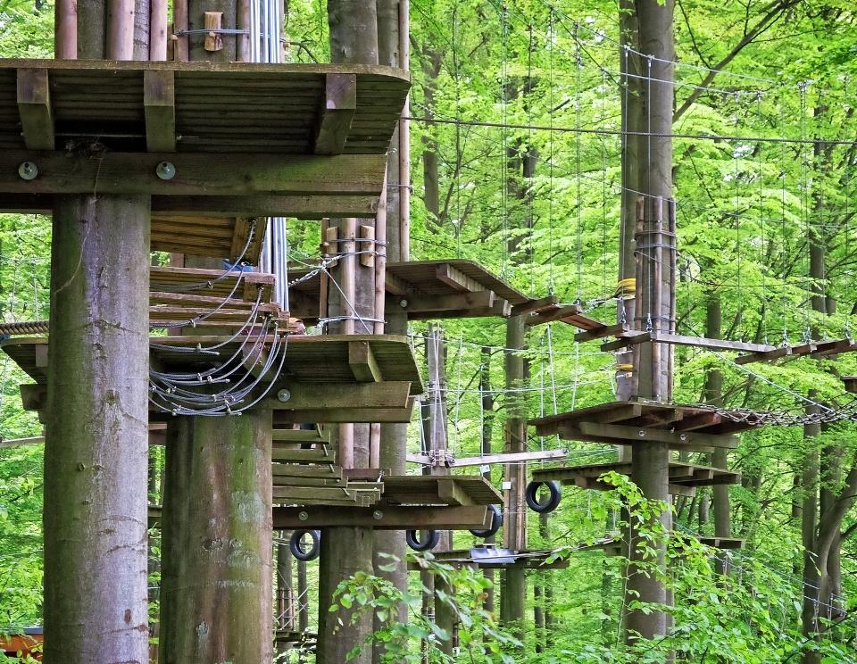 Seilgarten im Wald