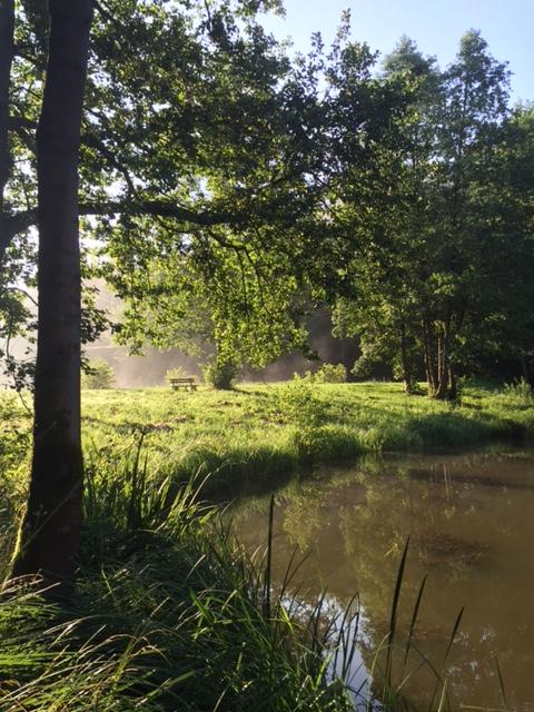 Zuhause in der Natur von Ricarda Lenz