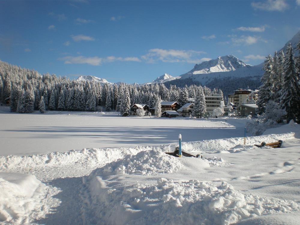 Winterlandschaft bei Arosa, Graubünden, Schweiz