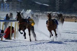 Skikjöring in St. Moritz