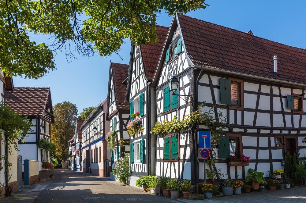 Jockgrim in der Südpfalz, Rhein